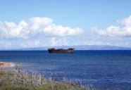 ハワイ・ラナイ島に見るワイルドな未来