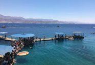 サンゴ礁とイルカのいるドルフィン・リーフ:エイラートにも静かなビーチがあった イスラエル旅行記vol5