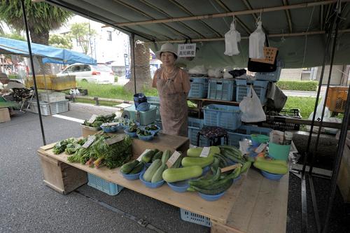 ウリ系の高知産野菜を並べるお店
