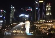 シンガポールで絶対に食べるべきローカルフード