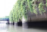 東京で、ぶらり舟散歩 ~いますぐ行ける江戸時代から続く舟運の街~